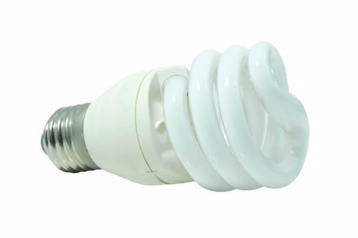 蛍光ランプ